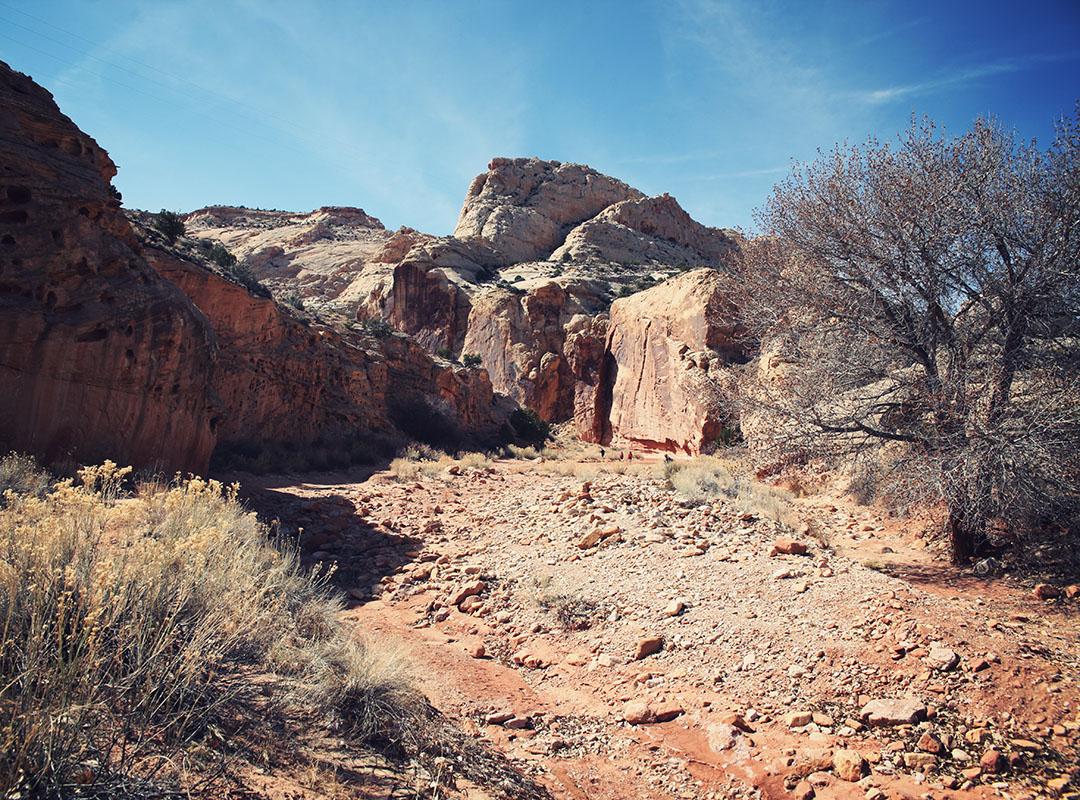 Capitol Reef National Park Utah USA Road trip Scenic Drive
