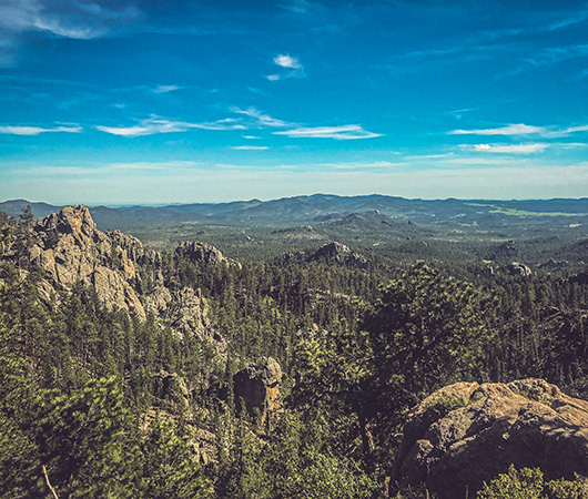 Black Hills South Dakota du Sud Custer State Park