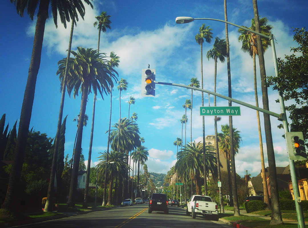 Dayton way Beverly hills los angeles california road palm trees