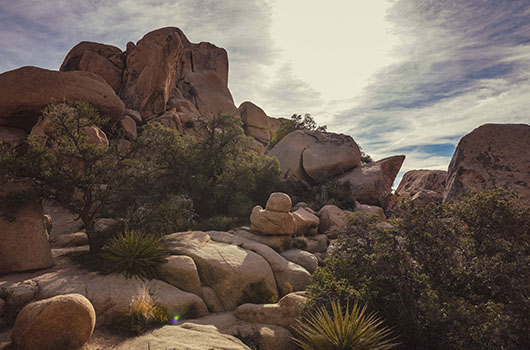 Joshua Tree National Park California Road Trip USA hidden valley nature trail
