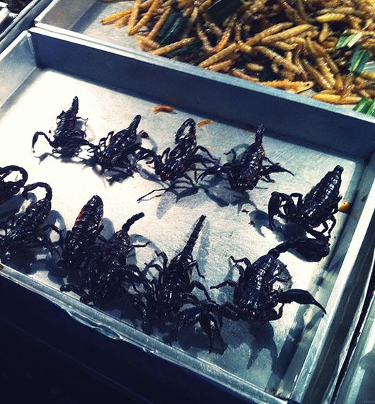 Manger des insectes à bangkok thailande