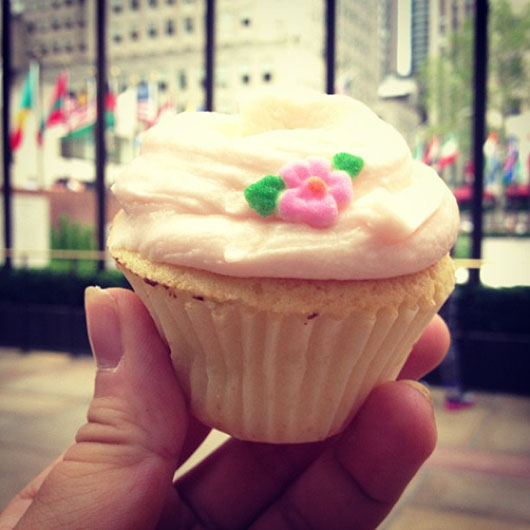 Magnolia bakery best cupcake new york
