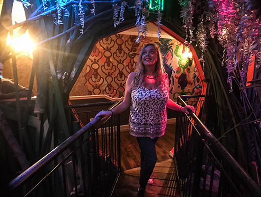 Meow Wolf museum santa fe new mexico