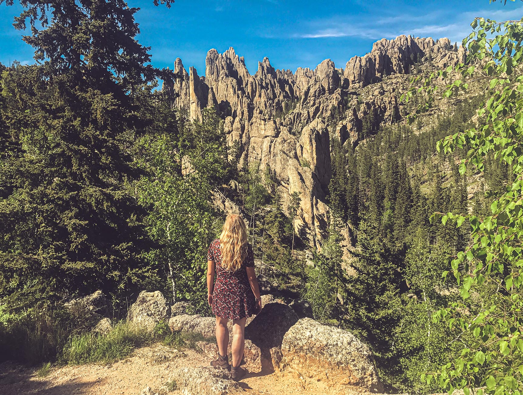 Black Hills South Dakota du Sud Custer State Park Needles Highway