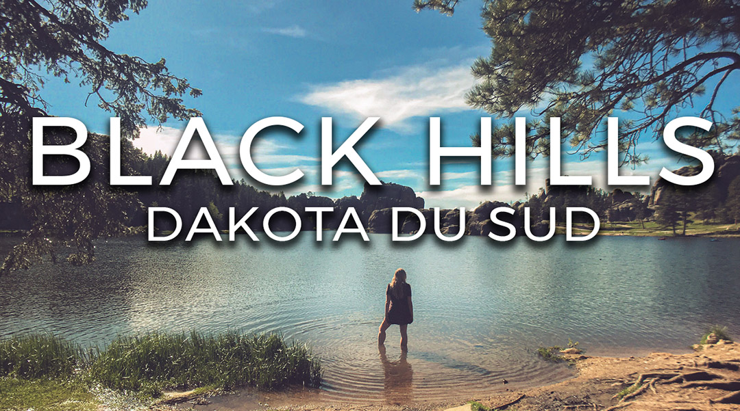 Video Vlog Road trip usa south dakota du sud black hills mont rushmore yellowstone