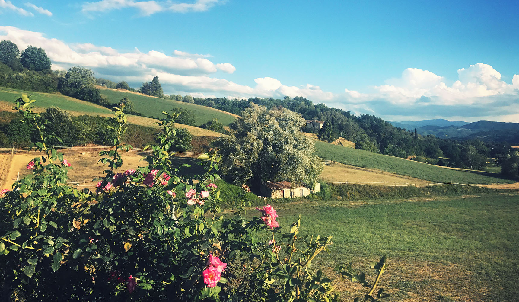 Toscane Tuscany Toscana