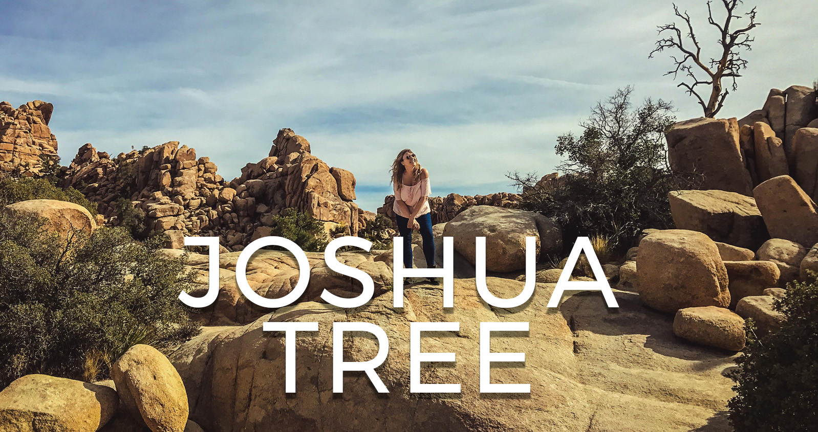 Vlog Joshua Tree National Park Californie USA road trip ouest américain