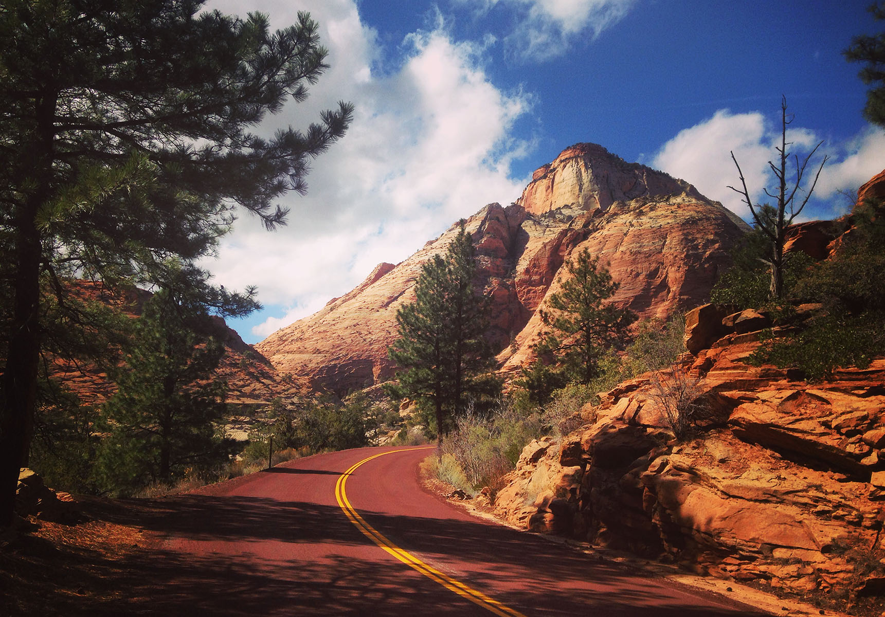 Zion national park utah road trip usa